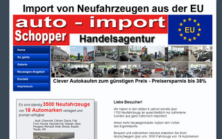 auto-import.at website preview