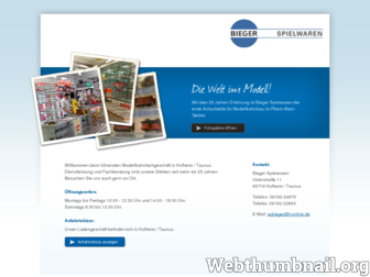 bieger-spielwaren.de website preview